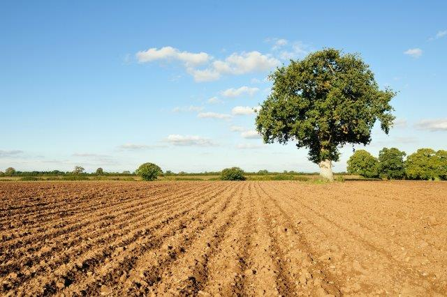 Ploughed ground