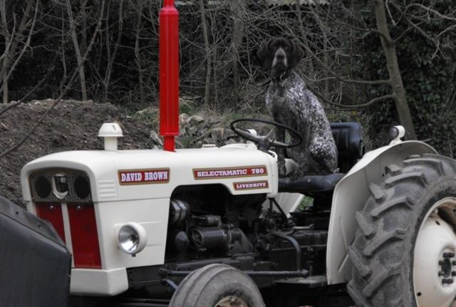 Tractor Run Fund-Raiser in Kiltegan on May 7th