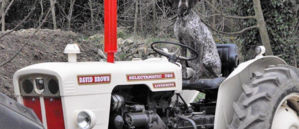 Tractor Run in Baltinglass